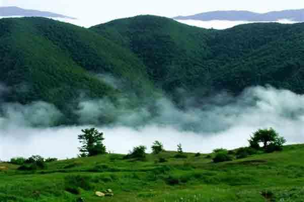 جنگل ابر در سمنان | جاذبه های طبیعی گردشگری ایران