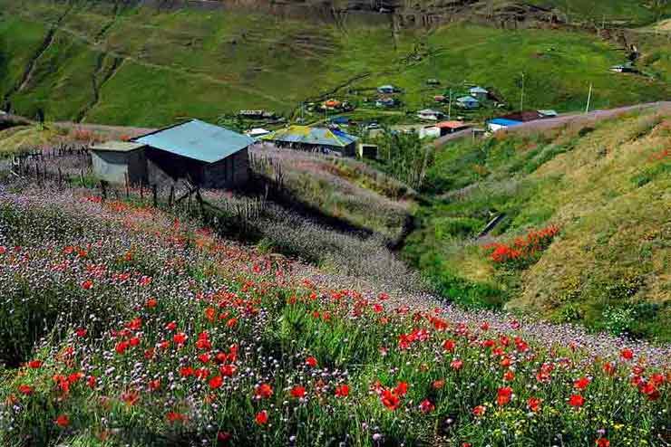 تنگ تامرادی یاسوج سرزمین آبشارهای شگفت انگیز | جاذبه های گردشگری ایران