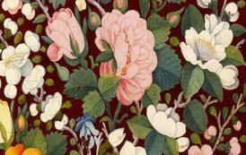 نمایشگاه امپراطوری گل رز | موزه لوور