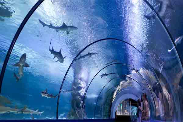 [عکس: Aquarium-Paris-1.jpg]