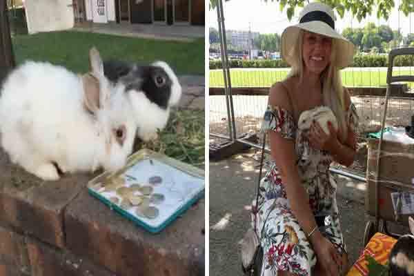 حیوانات دوست داشتنی,کلاهبرداری از توریستها در پاریس