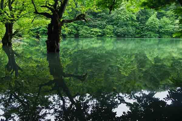 Lake miansheh