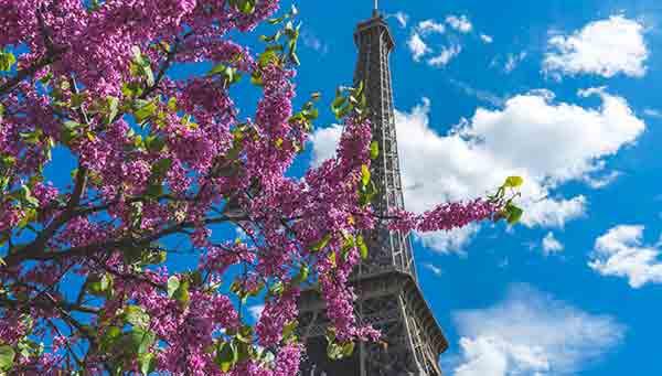 بهترین زمان برای سفر به پاریس